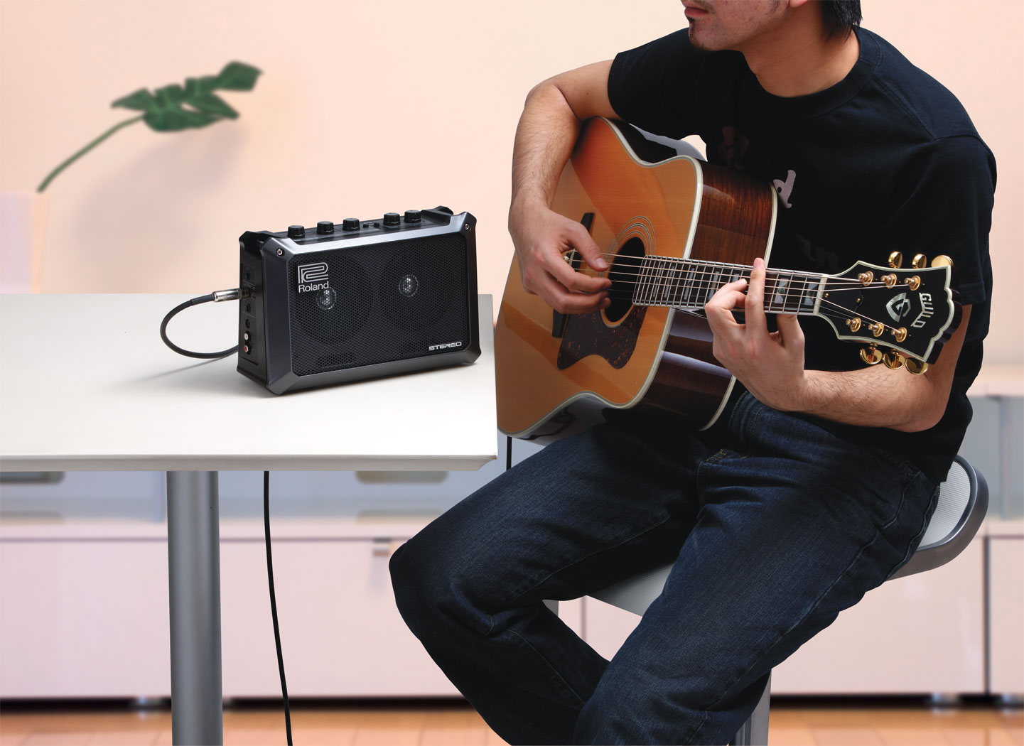 acoustic guitar and drum machine
