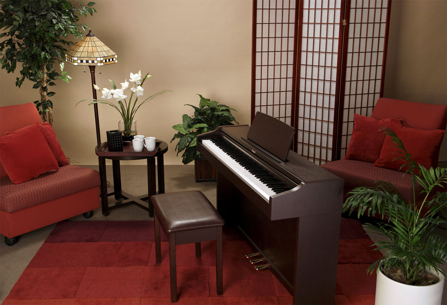 Roland rp 101 piano for Living room 101